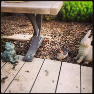 cat and rabbit garden creatures