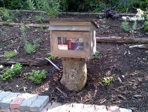 Free library on tree stump