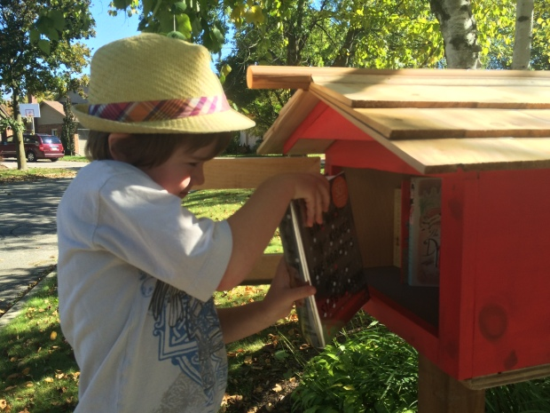 boy in hat adding books to little library