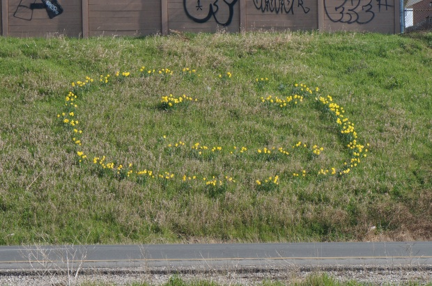 Flowers in the shape of a happy face